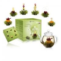 Darčekové balenie - zelený čaj