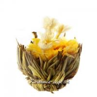 Kvitnúci čaj Dotyk slnka