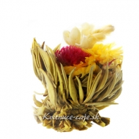 Kvitnúci čaj Jarné prebudenie
