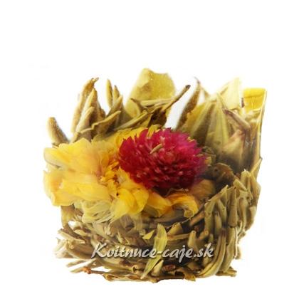 Kvitnúci čaj Tanečnica